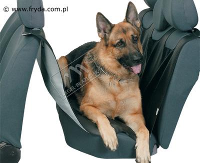 pokrowce samochodowe dla psa